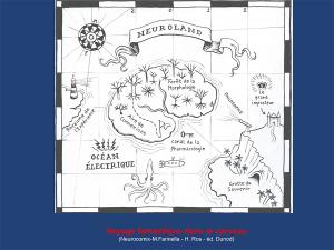 Neurodidactique-Collioure-2014-cerveau-apprendre