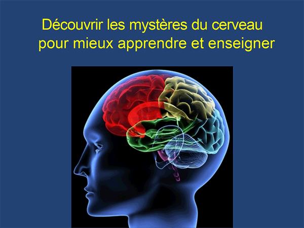 mysteres-du-cerveau-pour-mieux-apprendre-et-enseigner-INI-neuroeducation-accompagnement-jeunes