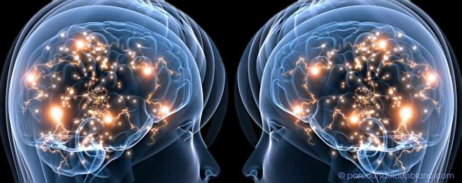 Langage et culture Neurones-miroirs-role-utilite-900