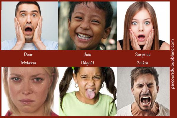 expression-des-6-emotions-primaires